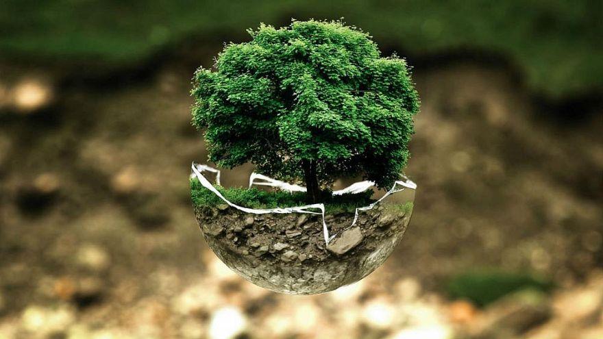 ¿Qué es el Día de la Tierra y cómo podéis celebrarlo?