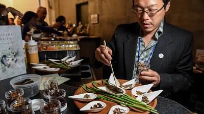 High-class insect dishes from New York