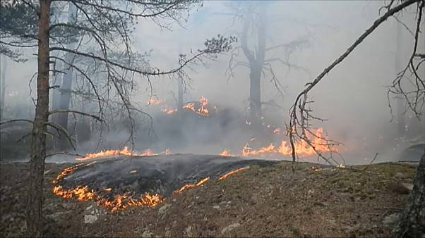 Violentos incendios en Siberia
