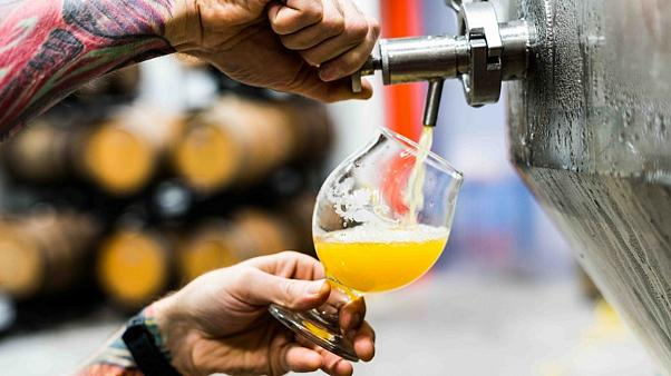 Brewers across the globe are foraging for better beer