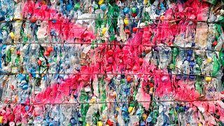 Sondaggio Change.org: gli europei vogliono una Ue più verde e più giusta