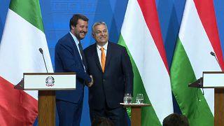 Salvini à conquista de Orbán