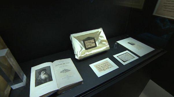 Leonardo Da Vinci e la ciocca della discordia