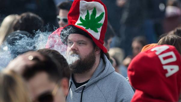 نتایج یک تحقیق: مصرفکنندگان جدید ماریجوانا در کانادا دو برابر شدهاند
