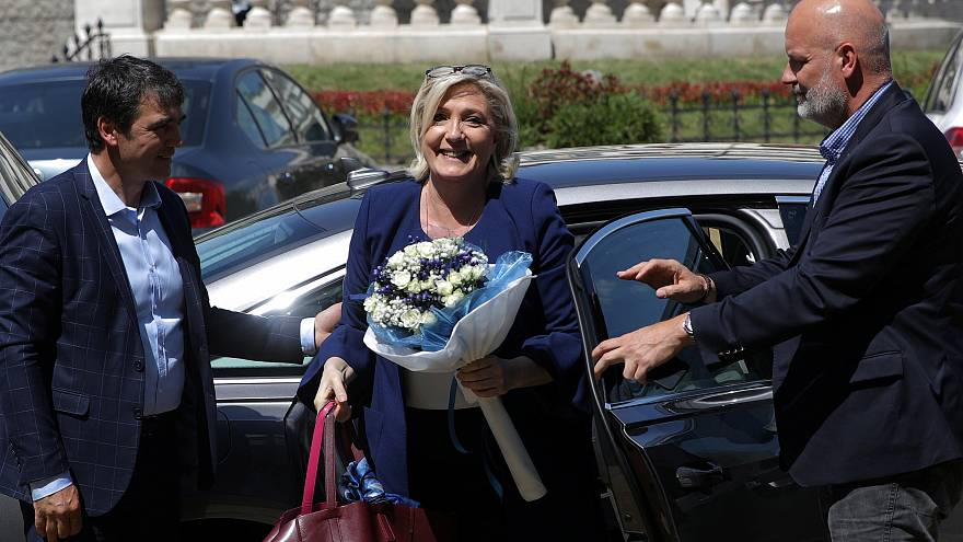 Потенциальные соратники и дружба с Сальвини: Марин Ле Пен в интервью Euronews