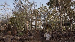 FILE PHOTO/An ecolodge in Pendjari National Park, Benin