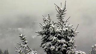 شاهد: عودة الثلوج إلى ألمانيا مع اقتراب فصل الصيف