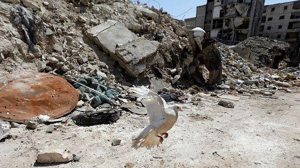 قتال عنيف في شمال غرب سوريا مع محاولات قوات الأسد للتقدم