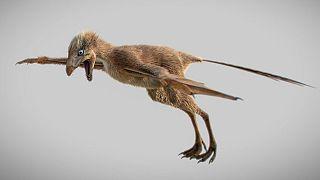 Ένας ασυνήθιστος μικροσκοπικός δεινόσαυρος