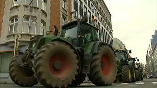 Bauernlobby ruft zur Teilnahme an Europawahl auf