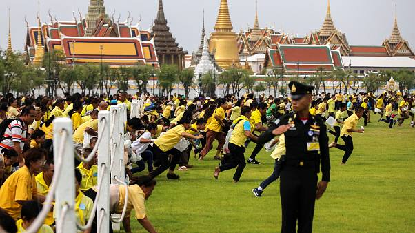 Thais scramble for sacred rice grains in annual ploughing ceremony