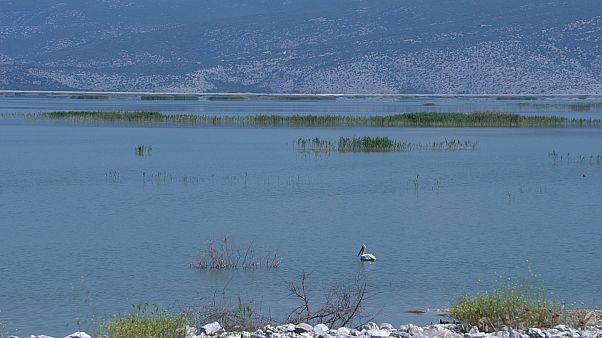 Λίμνη Κάρλα: Η νεκρανάσταση ενός παραδείσου