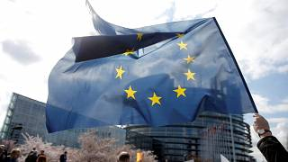 Watch: Euronews answers your questions on the European elections