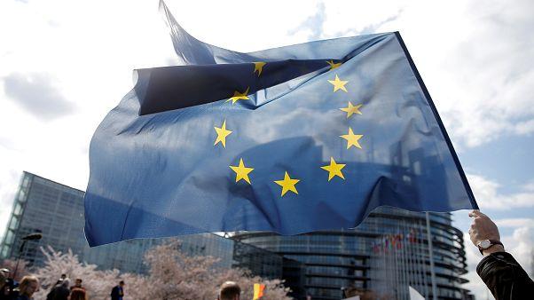 Avrupa Araştırma Konseyi'nin başına nanoteknoloji ve kanser uzmanı Ferrari geçiyor