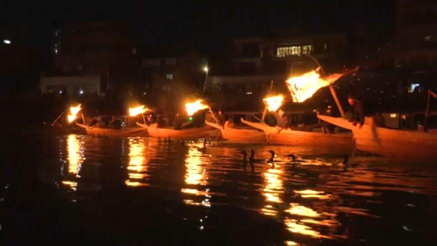 ویدئو؛ آغاز فصل ماهیگیری سنتی با پرندگان در ژاپن