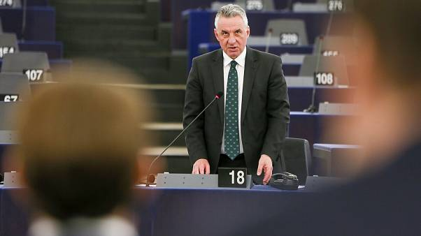 The Brief: European Conservatives and Reformists - a closer look