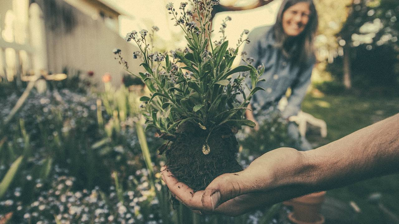 #GoodReads | Gardening for depression and profiting from fast fashion