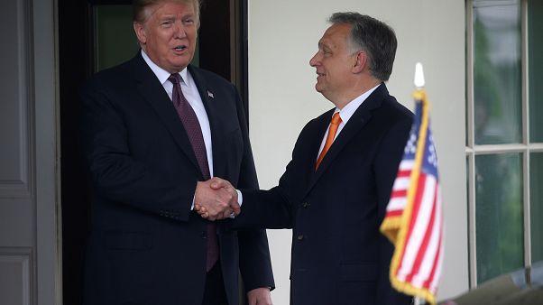 "Trump lobt Orbán: ""Er hat das Richtige getan"""
