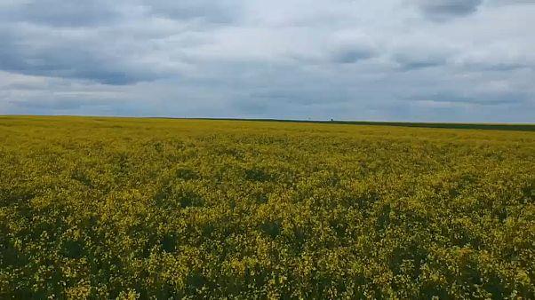 #EUroadtrip: Bei Österreichs Bauern zu Gast