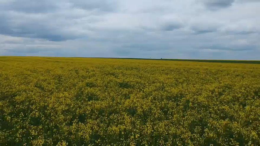 Road trip: viaggio tra i contadini austriaci