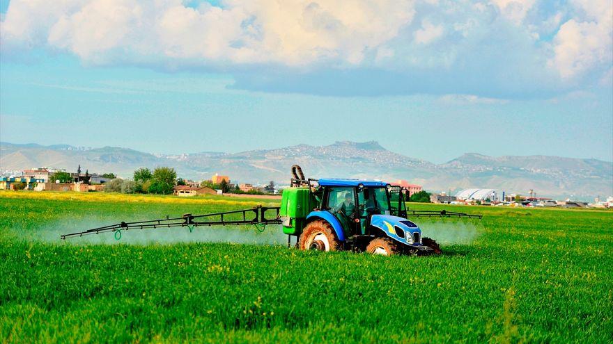 Güneydoğu Anadolu Bölgesi'nde çiftçiler