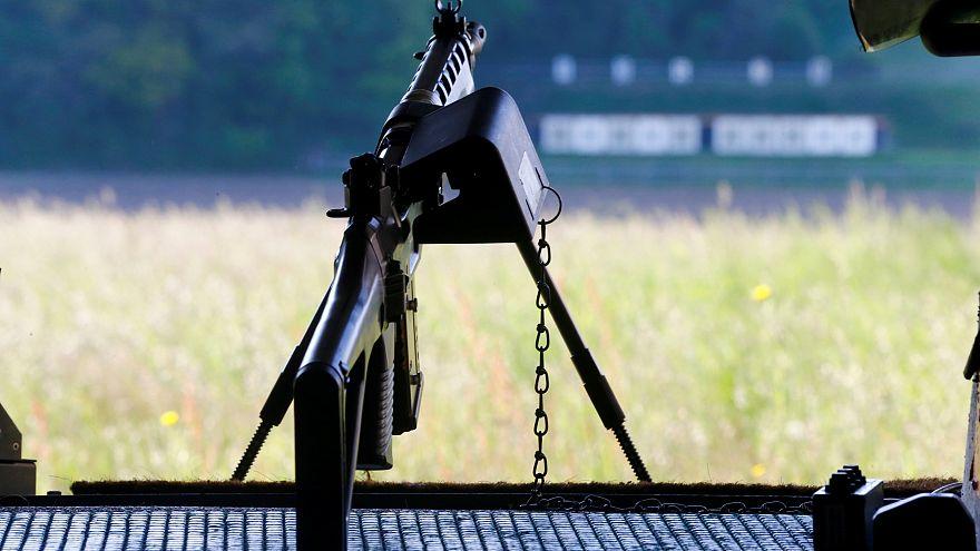 Шенген или винтовка в каждом доме?