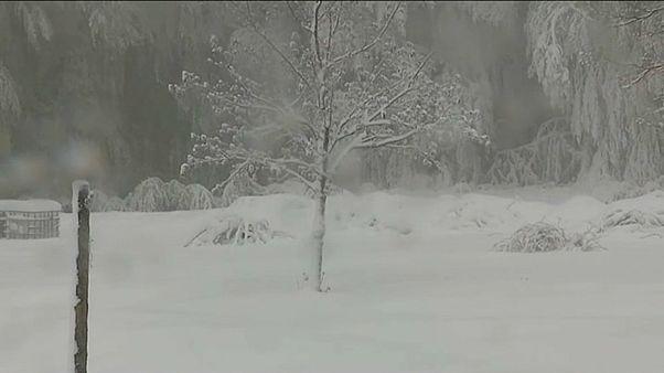 Корсику засыпало снегом