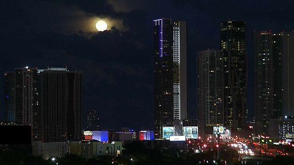 """Die schönsten Bilder vom """"Blue Moon"""""""