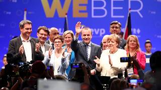 Final EU election rallies take place