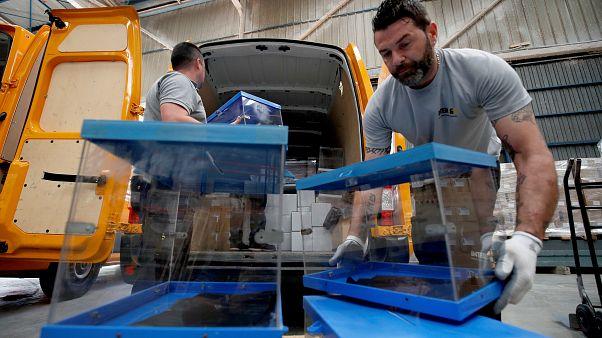 Spanyolországban pakolják a választási urnákat