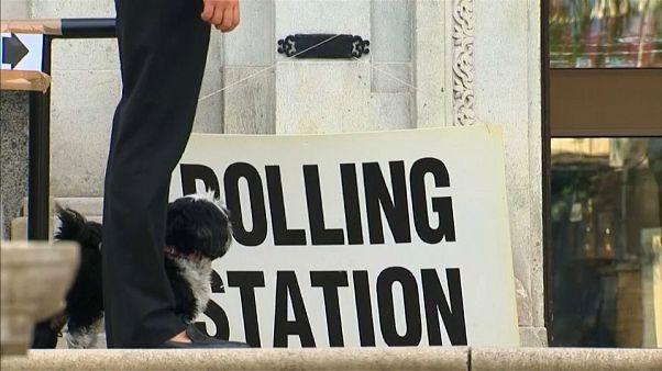 Regno Unito: le europee, Brexit e la crisi dei tory