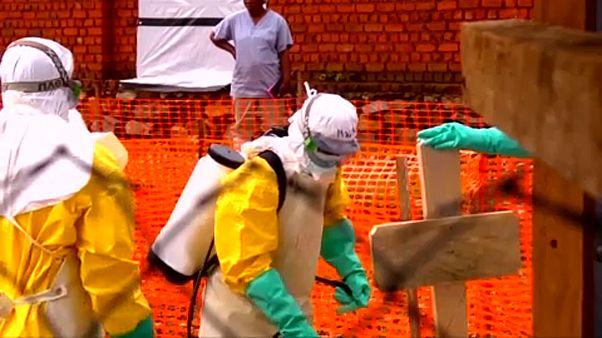 Különleges ebolaügyi ENSZ-megbízott Kongóban