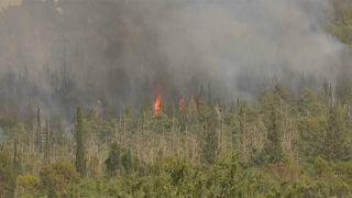 شاهد: مئات الحرائق في إسرائيل وإجلاء آلاف السكان