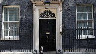 Who will let in Larry the cat when Theresa May leaves Downing Street?