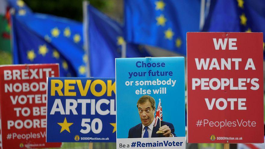Avrupa Parlamentosu 2019 seçimleri: Avrupa'da siyaset bölünüyor mu?