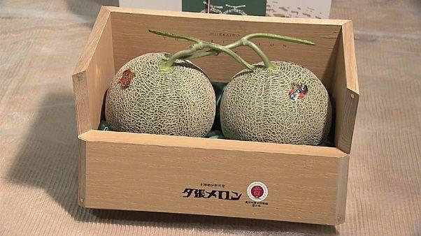 فيديو: بيع بطيختين صفراوين في اليابان بسعر خيالي يصل إلى 45 ألف دولار