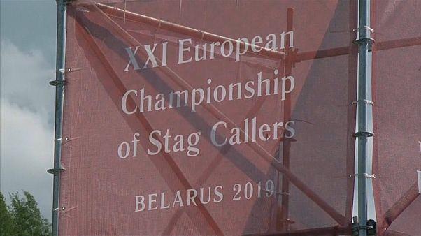 شاهد: الدورة الحادية والعشرين للبطولة الأوروبية لمناداة الأيائل