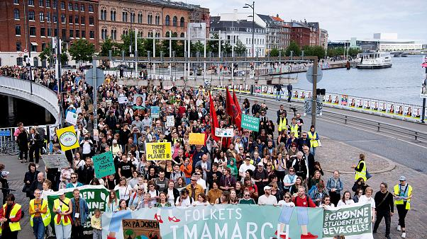 A climate march in Copenhagen on the day before the EU election results