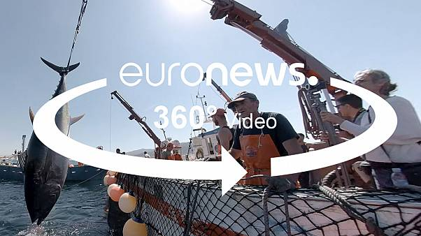VÍDEO 360º: Esta técnica ancestral es la forma más sostenible de capturar atún