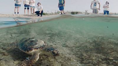Tide turns for an Italian coastal wasteland
