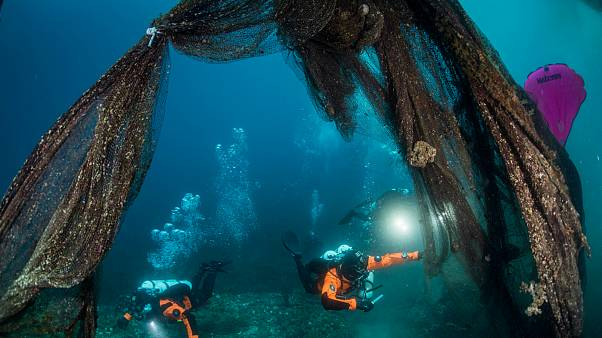 شاهد: غواصون يزيلون ألفي كيلوغرام من شباك الصيد من قاع البحر