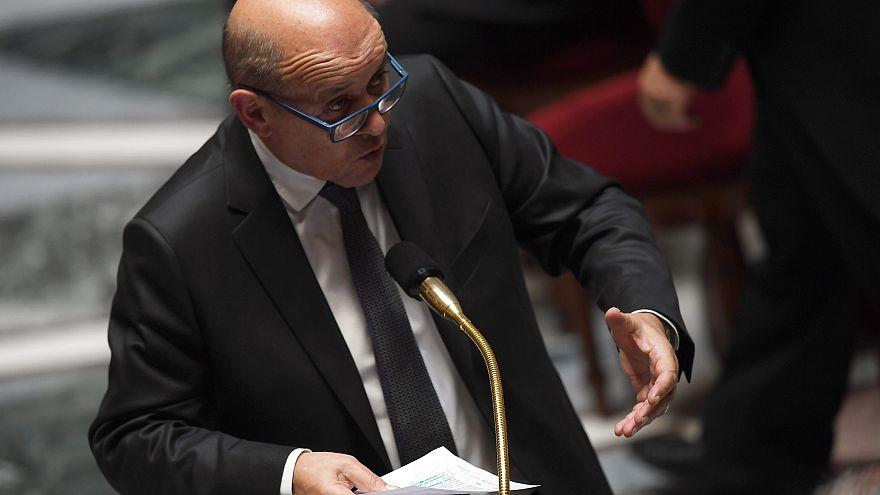 Fransa'dan IŞİD üyesi vatandaşlarının idamını engellemek için Irak'a baskı