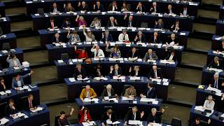 What do newly elected MEPs do until Parliament begins? | Euronews answers