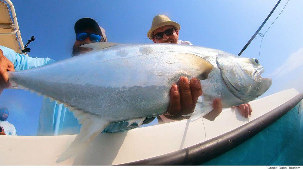 Дубай: рыбой единой
