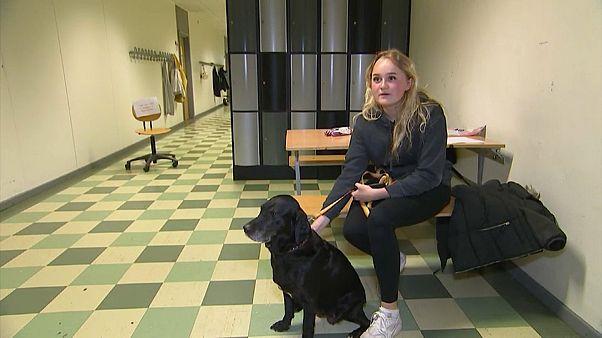 الطالبة فرييا بصحبة الكلبة سيف
