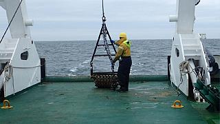 Evidence of prehistoric settlement discovered in North Sea