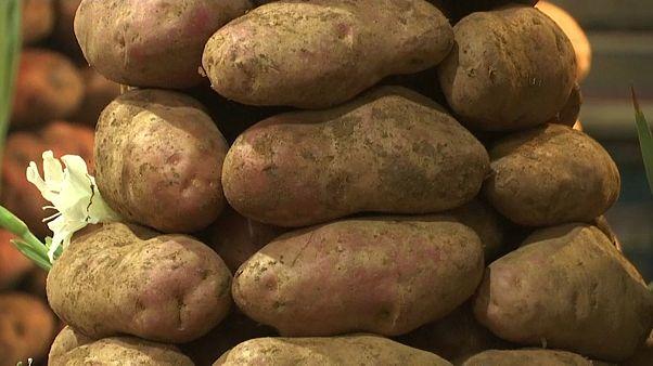 ¿Qué sería del mundo sin la patata?