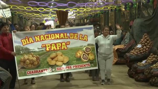 A banner reads 'National potato day: circular and always there'