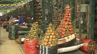 Перу: ода картофелю