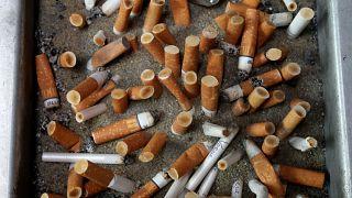 Paris Belediyesi, 52 park ve bahçede 8 Haziran'dan itibaren sigara içilmesine yasak getirecek